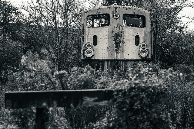 Der Zug kommt --- Train is comming
