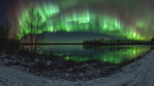First snow Auroras