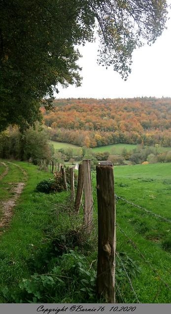 Chemin de randonnée Lyons la Forêt