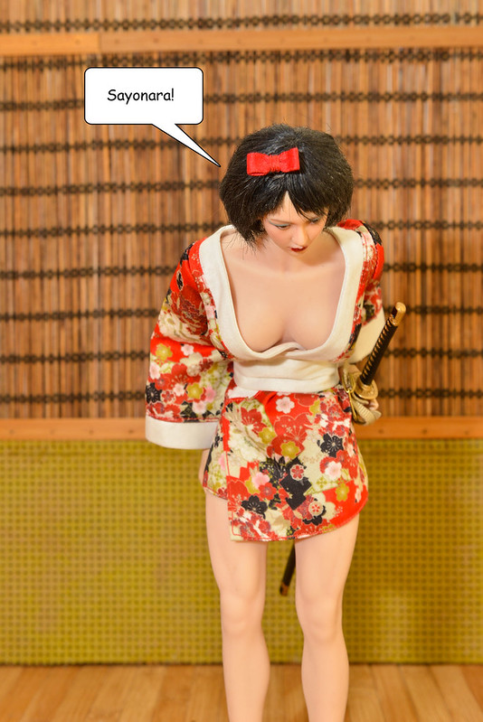 Attention All members! Kimono Troop offering Free Aftermath Survival Training.  - Page 4 50525271937_c87bf0c135_c