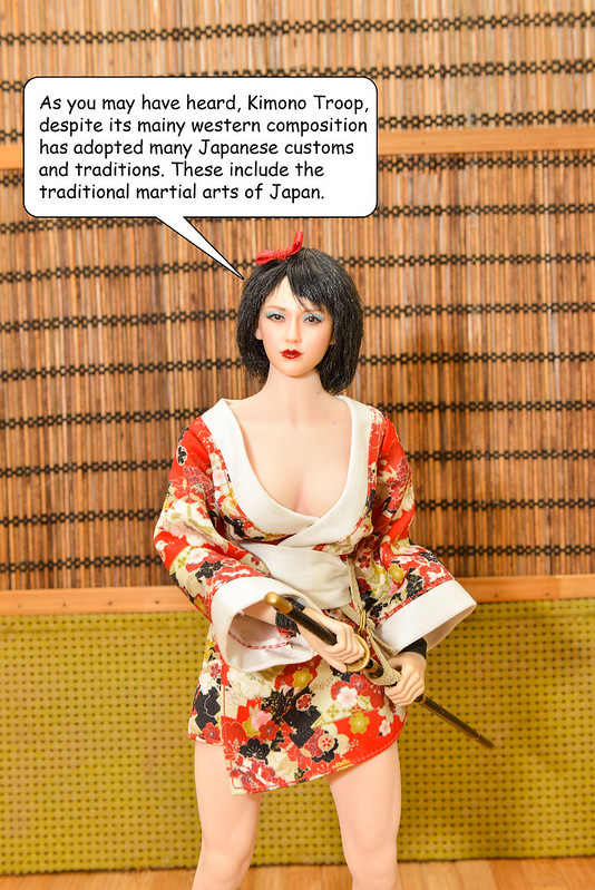 Attention All members! Kimono Troop offering Free Aftermath Survival Training.  - Page 4 50525274492_7d8b3111a6_c