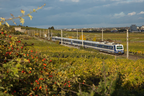 EMUs through the Vineyards | by RailScapes