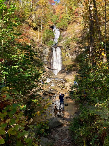 westernnorthcarolina northcarolina landscape fallcolors colorful fall autumn nature woods forest water cascade cascada waterfall