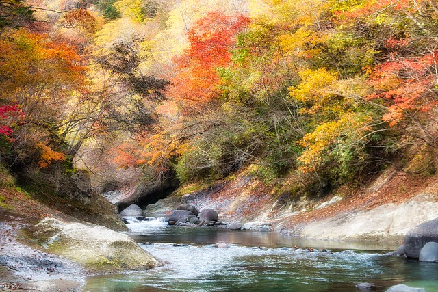 Bend in the River, Shiraoi