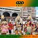 Vijayadasami Special: దసరా వేడుకలను ఎక్కడ ఎలా జరుపుకుంటారో తెలుసా ?