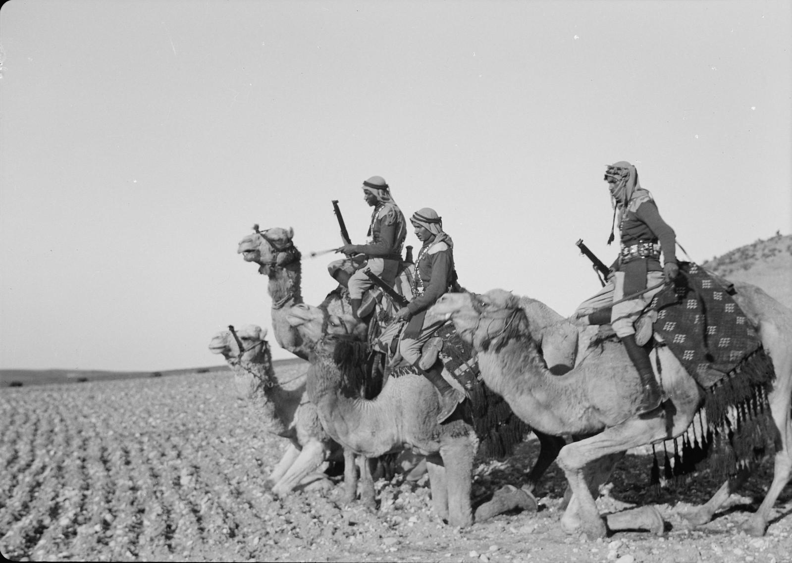 07. Гости спускаются со своих верблюдов