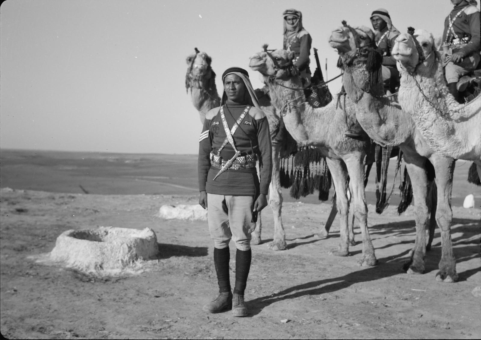 05. Верблюды со всадниками на вершине Тель-эль-Меллих