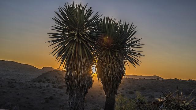 Bigbend Sunset