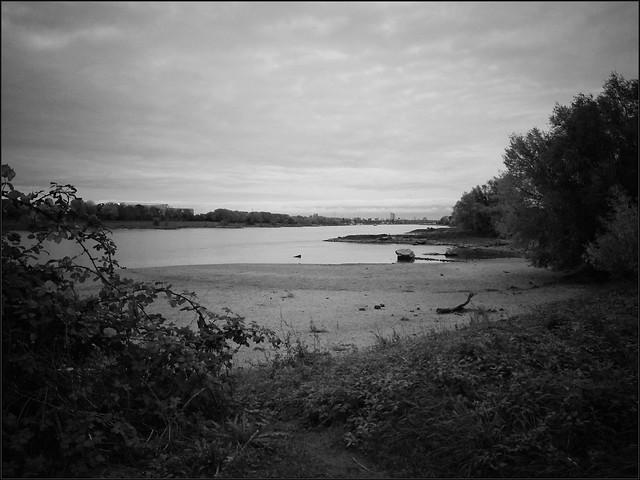 Impressionen eines düsteren Oktobernachmittags am Rhein II