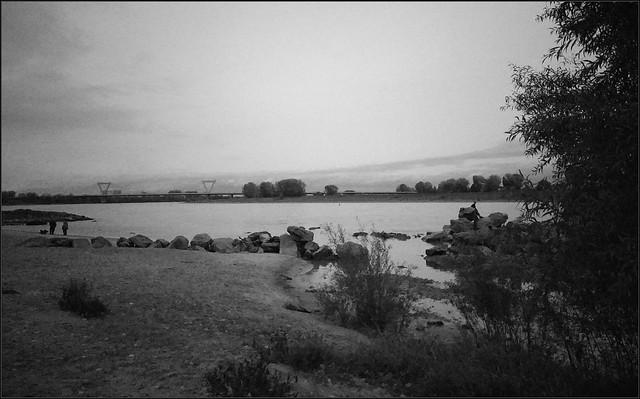 Impressionen eines düsteren Oktobernachmittags am Rhein I