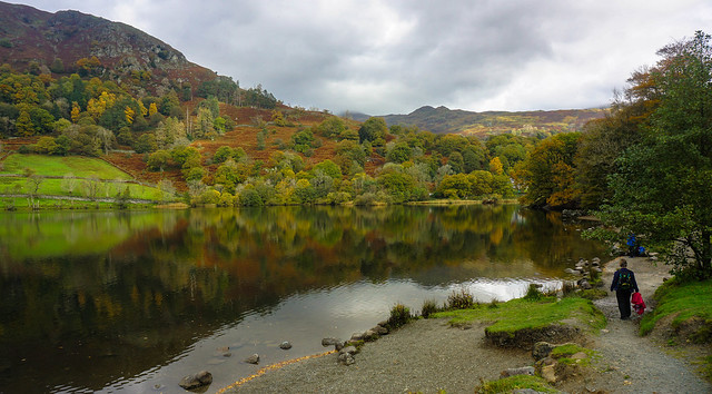 Trees reflected in Rydal Water
