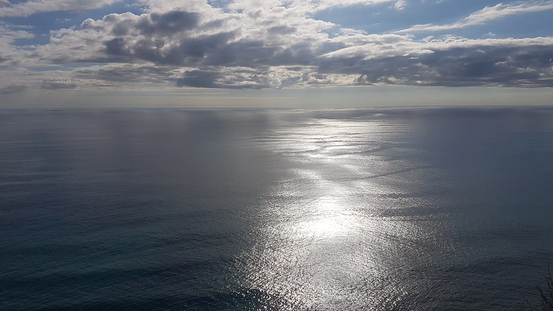 Looking west from Piha