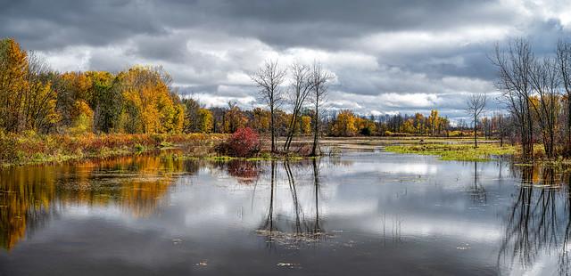 Hullett Marsh Fall Panorama