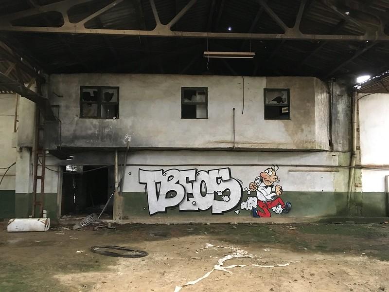 tbeos (24)