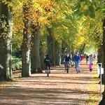 Down Avenham Park at Preston