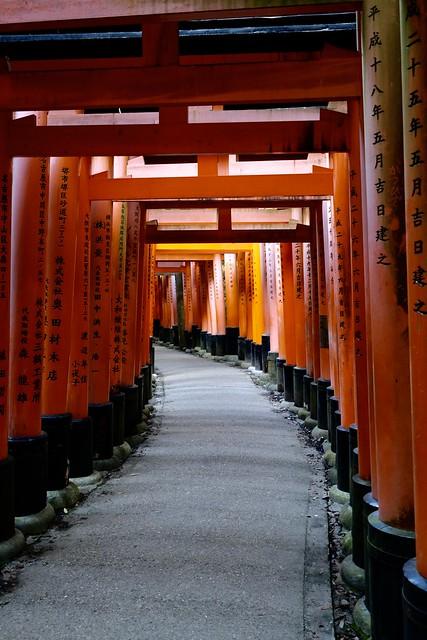 Fushimi Inari Taisha without the tourists