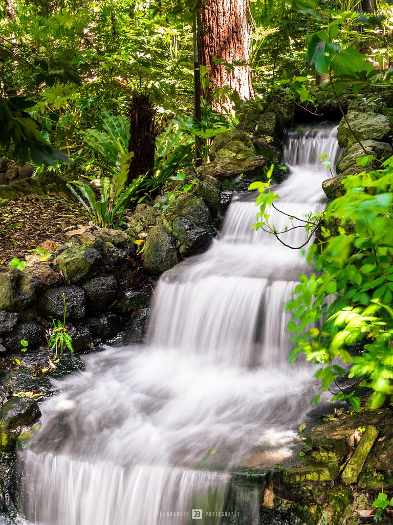 Fernery Falls