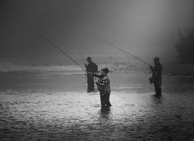 Foggy morning salmon fishing