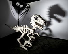 Vinny velociraptor skeleton shadow and spider