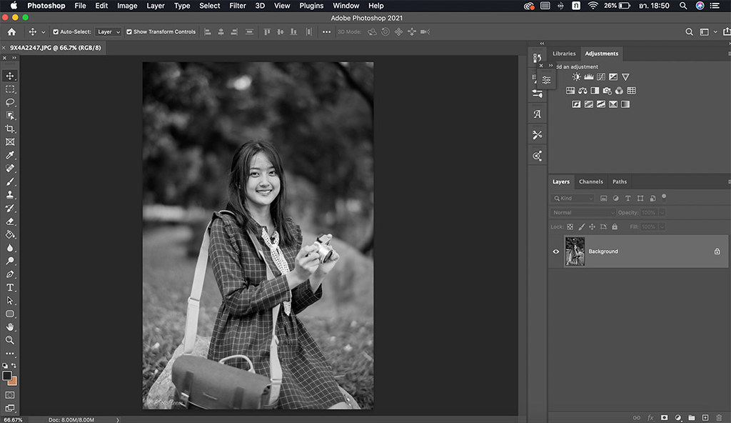 photoshop-colorize-02