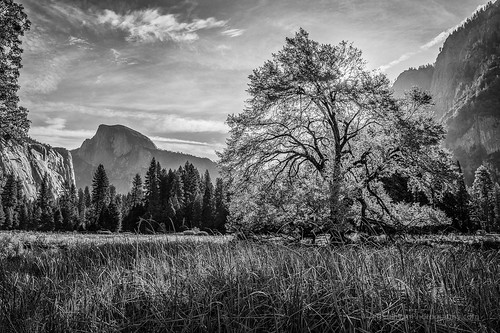 Elm and Half Dome