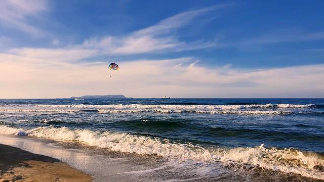 A sea baloon