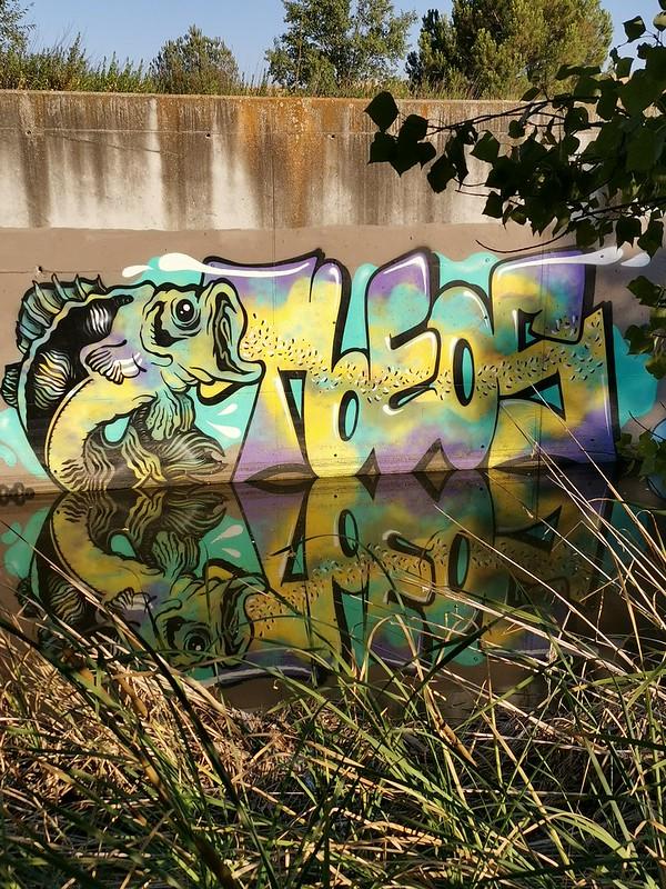 tbeos (20)