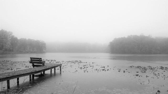 Overcast & Rain