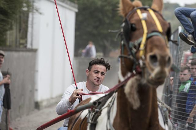 Ben Hur of Ballinasloe