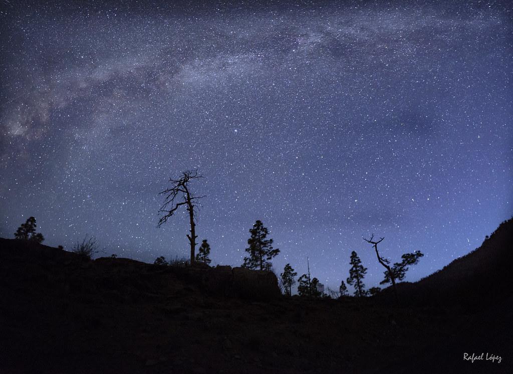 Titilan azules los astros a lo lejos (Neruda)