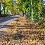 Autumn down Egerton Road, Ashton
