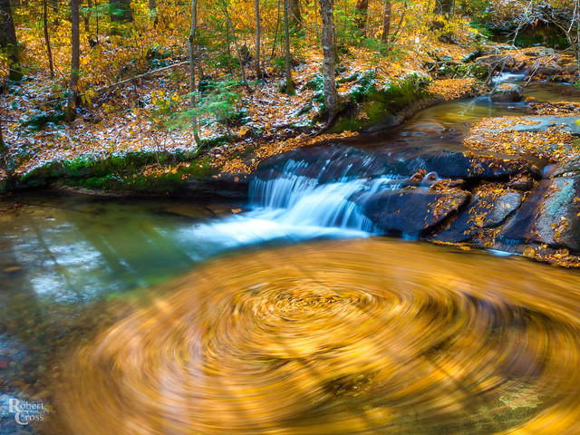Pemi Autumn Swirl