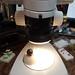 ArthroSphere Entomology Microscopy Accessory
