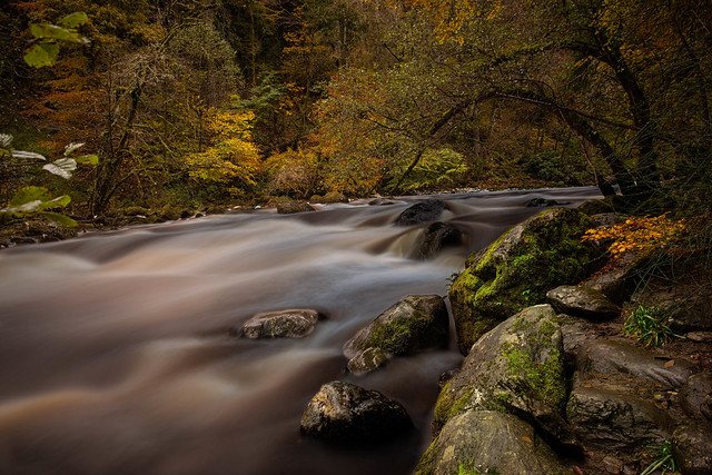 The Hermitage at Dunkeld