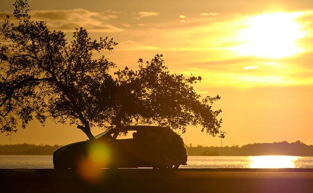 Sunny morning with my Alfa Romeo Mito!