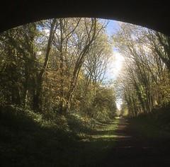 Autumn light on the old line #2