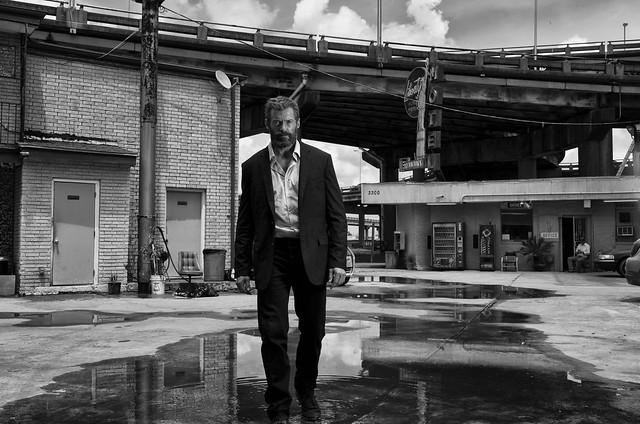 Logan Noir - Farkas, 2020. november