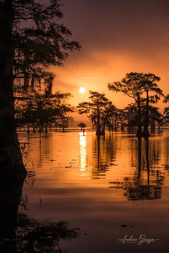 caddolake uncertaintx texas easttexas sunrise swamp lake reflection cypress cypresstrees orange