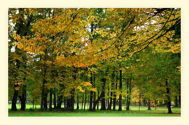 Jesień w parku * EXPLORE