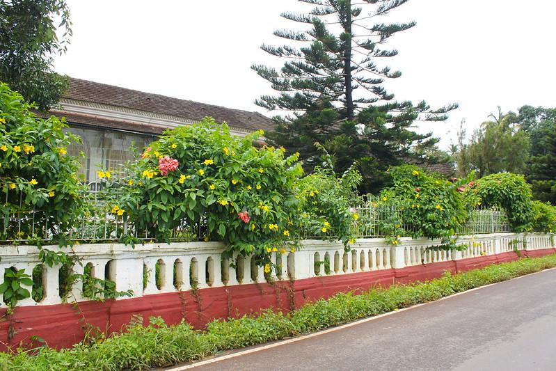 Goa 20