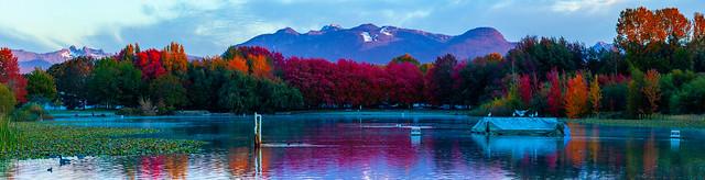 Trout Lake - Vancouver, BC