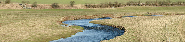 Gala Water, Beamish