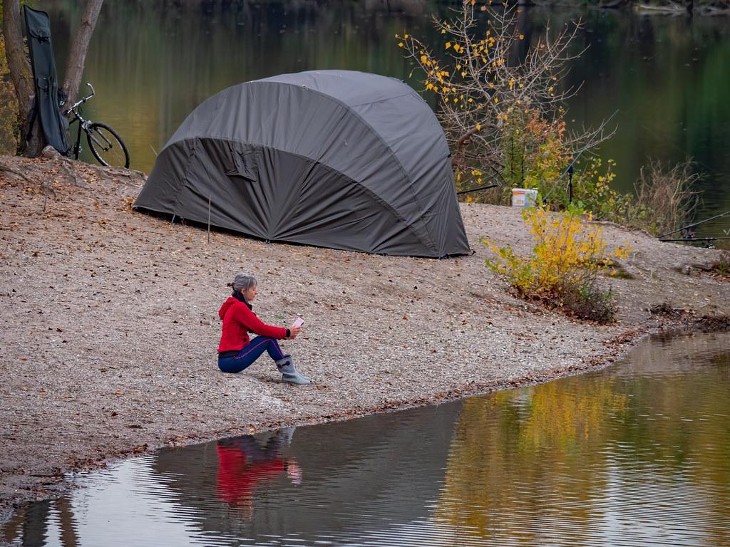 Au bord de l'étang... + nouveau cadrage... 50529818807_807b8ebdb8_b