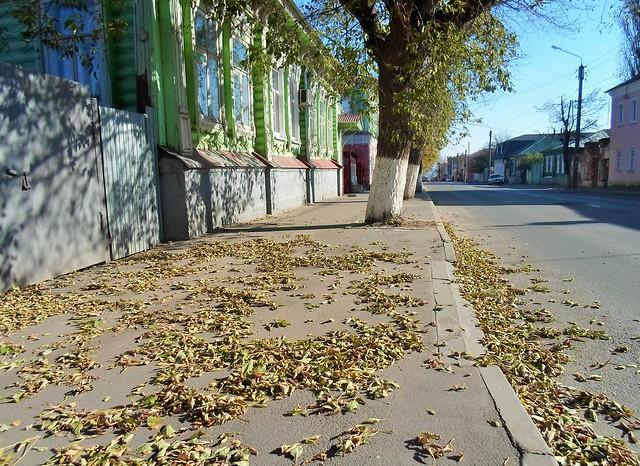 Un attimo di quell'autunno...