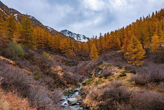 Herbstwanderung Zwischbergen - Monscera - Camoscella (Pizzo Pioltone)