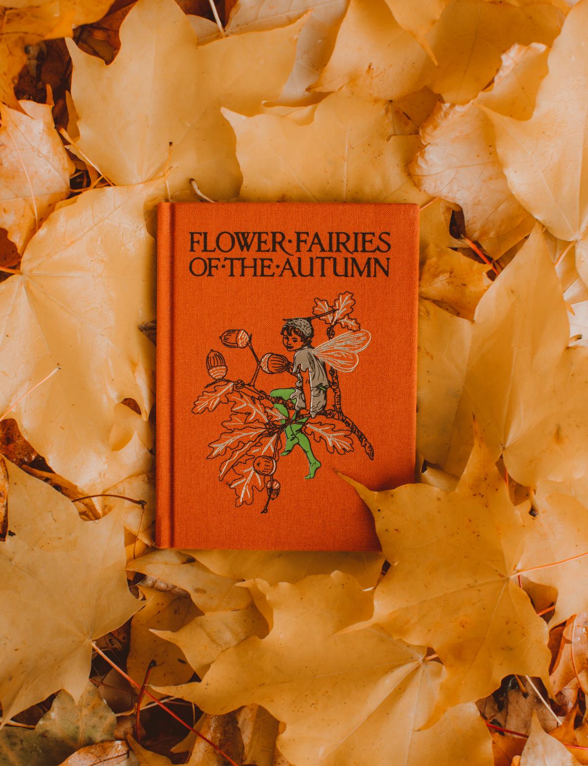 fairybook-5