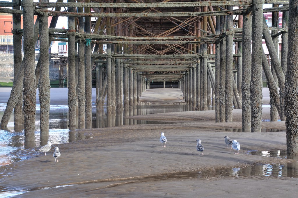 Under the pier at Blackpool