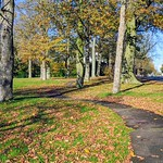 Autumn Ashton Park