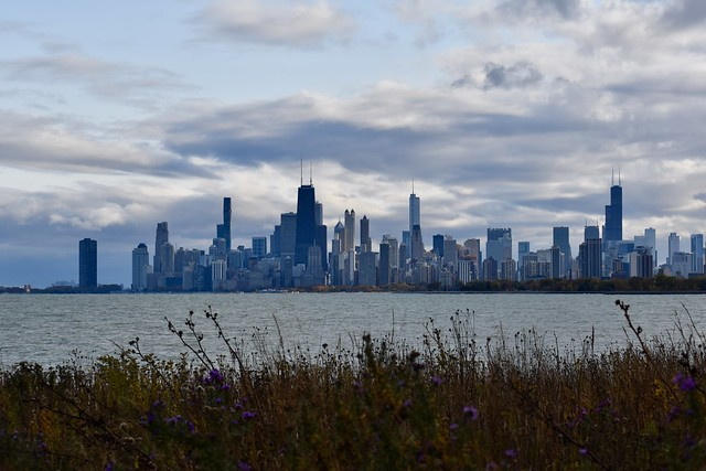 View of Chicago Skyline from The Magic Hedge at Montrose Point Bird Sanctuary