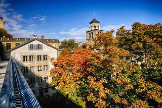 Autumn at the Tavern in Geneva, Switzerland